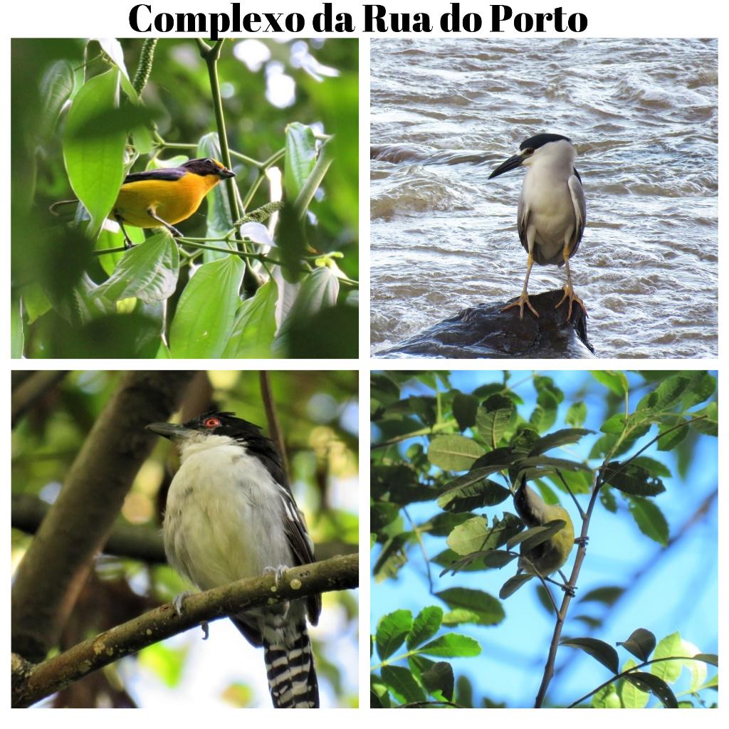 complexo-da-rua-do-porto-5