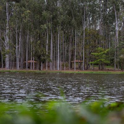 horto-florestal-de-tupi-capa-16