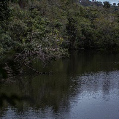 horto-florestal-de-tupi-capa-8