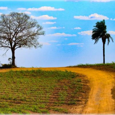 caminho-dos-mosteiro-capa1-home