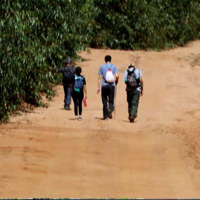 trilha-caminhada-caminhada-agromonges-20-m