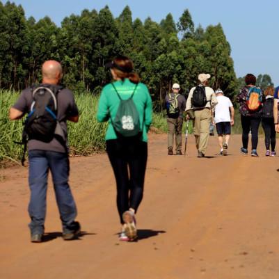 trilha-caminhada-caminhada-agromonges-23-m