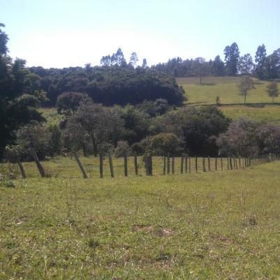 trilha-caminhada-caminhada-agromonges-27-m