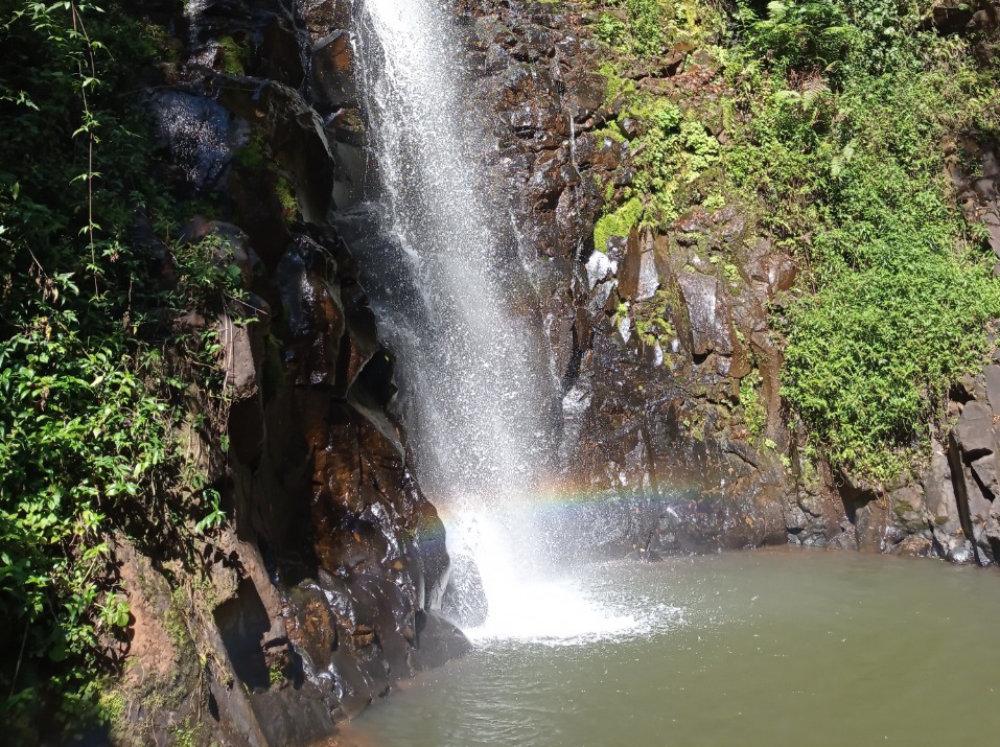 trilha-cachoeira-passa-cinco-14-capa