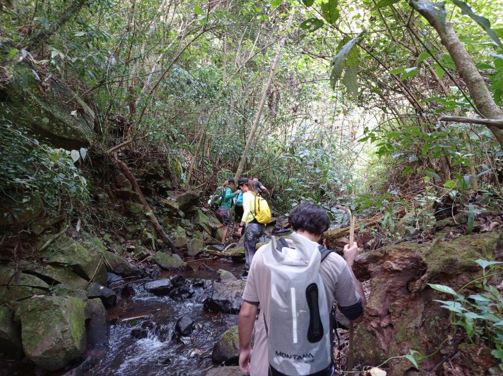 trilha-cachoeira-passa-cinco-15