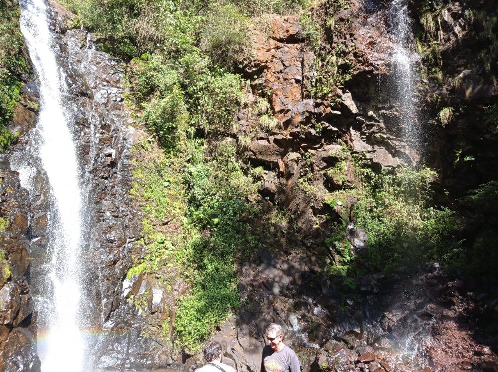 trilha-cachoeira-passa-cinco-20