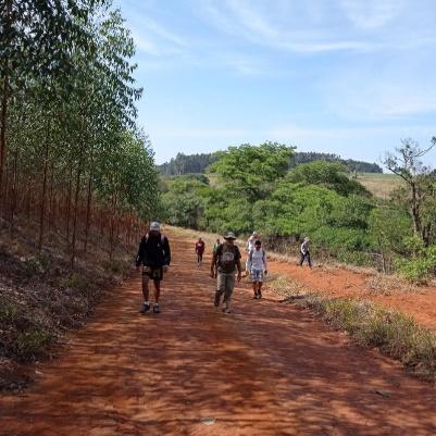 trilha-do-lisinho-capa-home